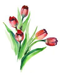Watercolor -Red Tulips-