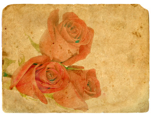 Bouquet of Roses. Old postcard.