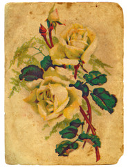 painted a bouquet of roses. Old postcard.