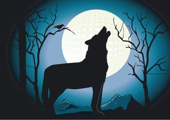 Wolf in der Nacht