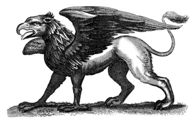 Medieval gryphon illustration (1678)