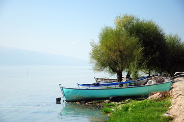 boats under trees by lake
