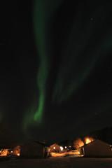Northern Light above a Lofoten's village