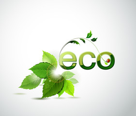 eco poster with fresh green leaves