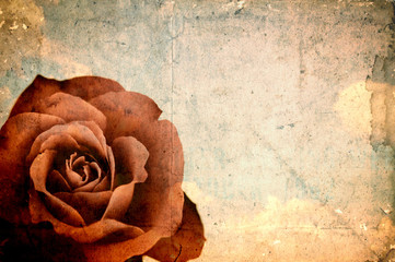 Empty grunge paper with red rose