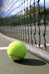 Tennis ball lies next to the net