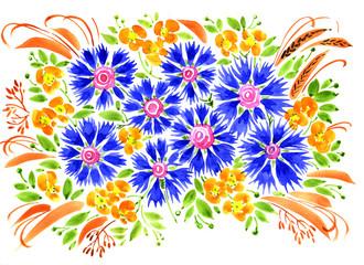 hand painted illustration: Cornflowers