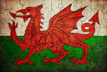 Grunge Wales flag
