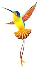 Colibri-Hummingbird-Vector