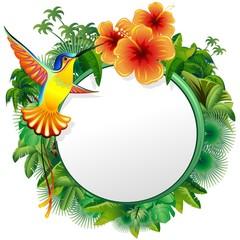 Colibri Biglietto Esotico-Hummingbord Hibiscus Jungle-Vector