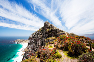 Foto op Plexiglas Afrika cape point, cape peninsula, south africa