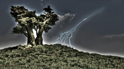 Tree and lightning