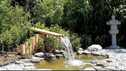 petit bassin aquatique de jardin clip vid o libre de droits sur la banque d 39 images. Black Bedroom Furniture Sets. Home Design Ideas