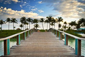 Tropical Ocean Beach Summer Vacation Palm Trees Paradise Resort