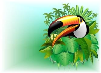 Tucano Sfondo Giungla-Toucan on Jungle Background-Vector