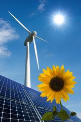 Solarmodule, Windkraftrad und Sonnenblume vor sonnigem Himmel
