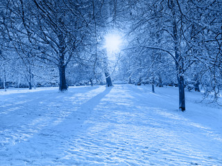 Blue Snow scene with light shafts