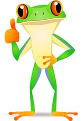 Fuy frog cartoon