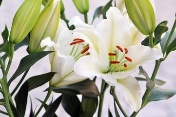 bouquet of fresh flower. (background)
