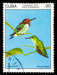 CUBA - CIRCA 1977: A Stamp printed in CUBA, shows image of a Hum