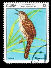 CUBA - CIRCA 1977: A stamp printed by Cuba, shows Bird Zapata Wr