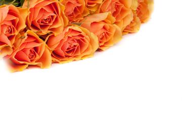 Wunderschöner Hintergrund aus Rosen