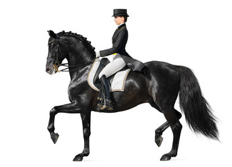 Fotoväggar - Dressage - black horse and woman