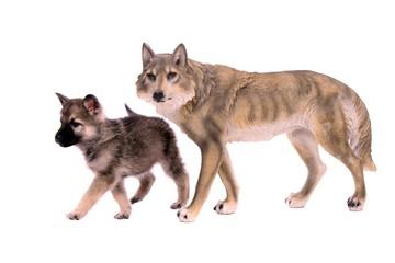 Wolfshund Welpe mit Wolfsfigur laufend