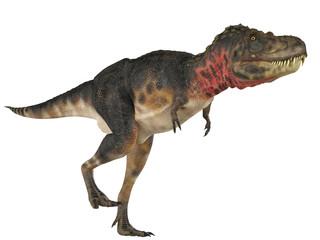 tarbosaurus walking free