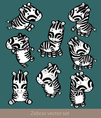 little cute zebra set