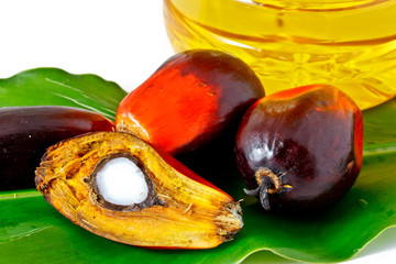 palm fruits and plam olein oil