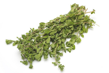 Bunch oh thyme