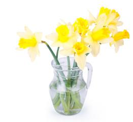 Jug with daffodils