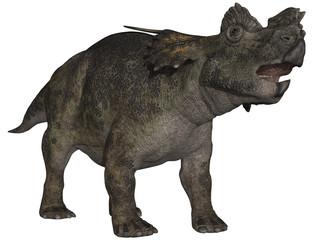 Achelousaurus - 3D Dinosaurier