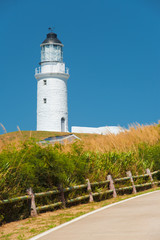 Dongju Matsu Lighthouse Tall Grass V