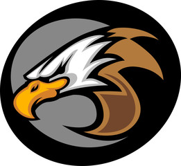 Eagle Mascot Head Vector Graphic Illustration