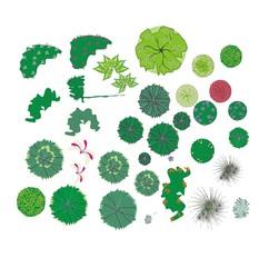 Fototapeta wzory roślin