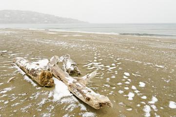 Nevicata spiaggia Ansedonia
