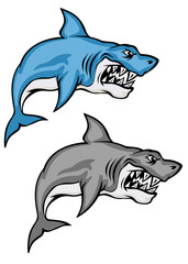 Danger sharks