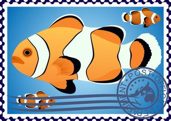 Clown Fish. Postage stamp