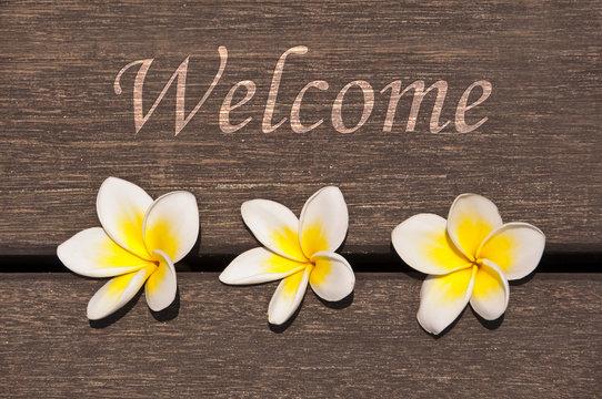 Panneau Welcome, fleurs de frangipaniers