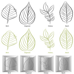 Tree Leaf Type Set