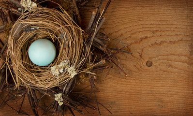 Single blue egg in a nest, with a wooden background