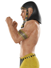 Pharaoh fighter side view.jpg