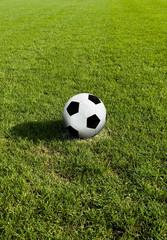 Classic soccer Ball on green grass