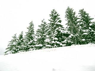 北イタリア雪景色(カナツェイ)