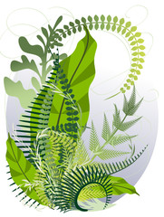 Bouquet of fern stems