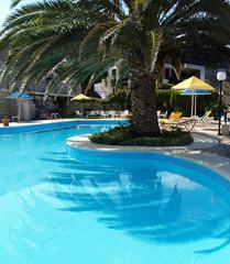 Swimming pool with palmtree
