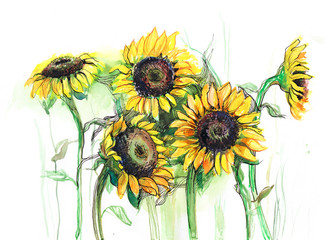 sunflowers (series C)