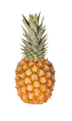 Pineapple a fruit